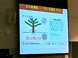 The presentations at the symposium in Kobe, Japan were as hard to read as they were to hear.