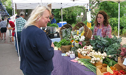 Kathie Maldonado uses her Bridge Card at the Sara Hardy Farmers Market in Traverse City to double-her money.