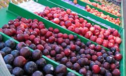 Food Safety Legislation to U.S. Senate for Vote