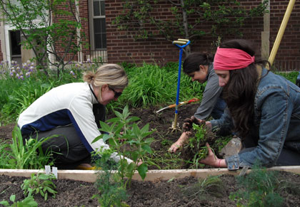 Central Grade Youth Garden: A Planting Party