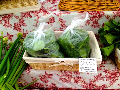 Pick of the Week: Spinach
