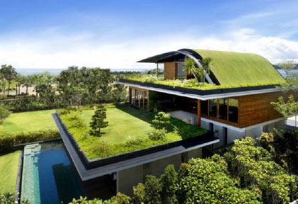 More Green Roofs for Michigan?