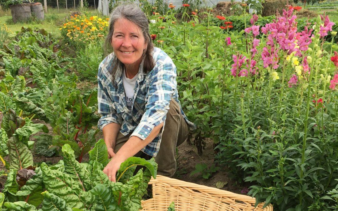 Pellston Public Schools, Pellston Farmers Market Embrace Local Food Economy