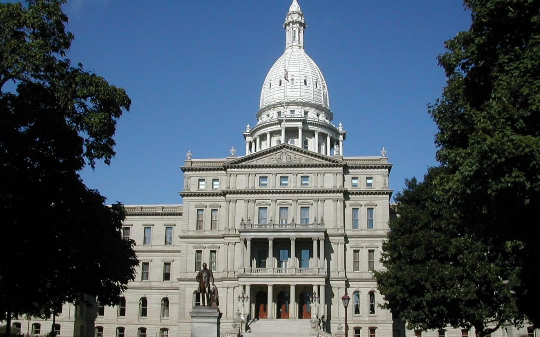Video: 7 Michigan Candidates for Governor Talk Clean Energy Economy and Line 5